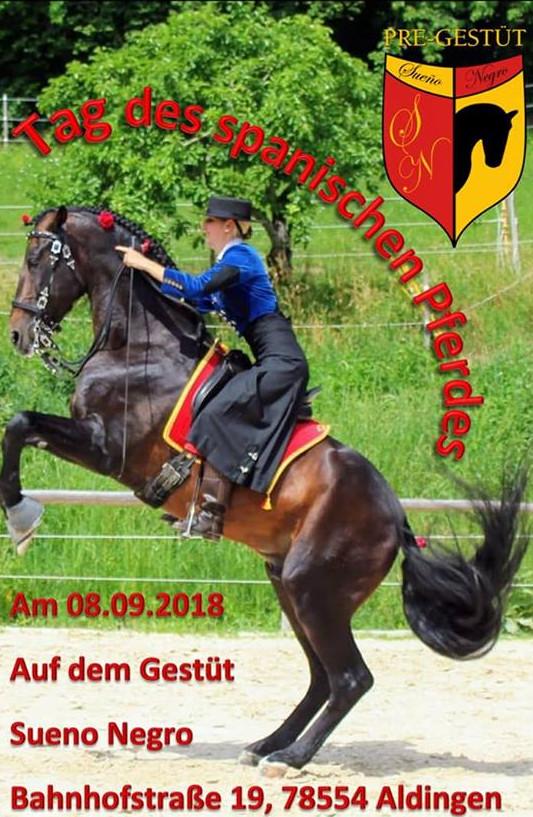 Tag des spanischen Pferdes