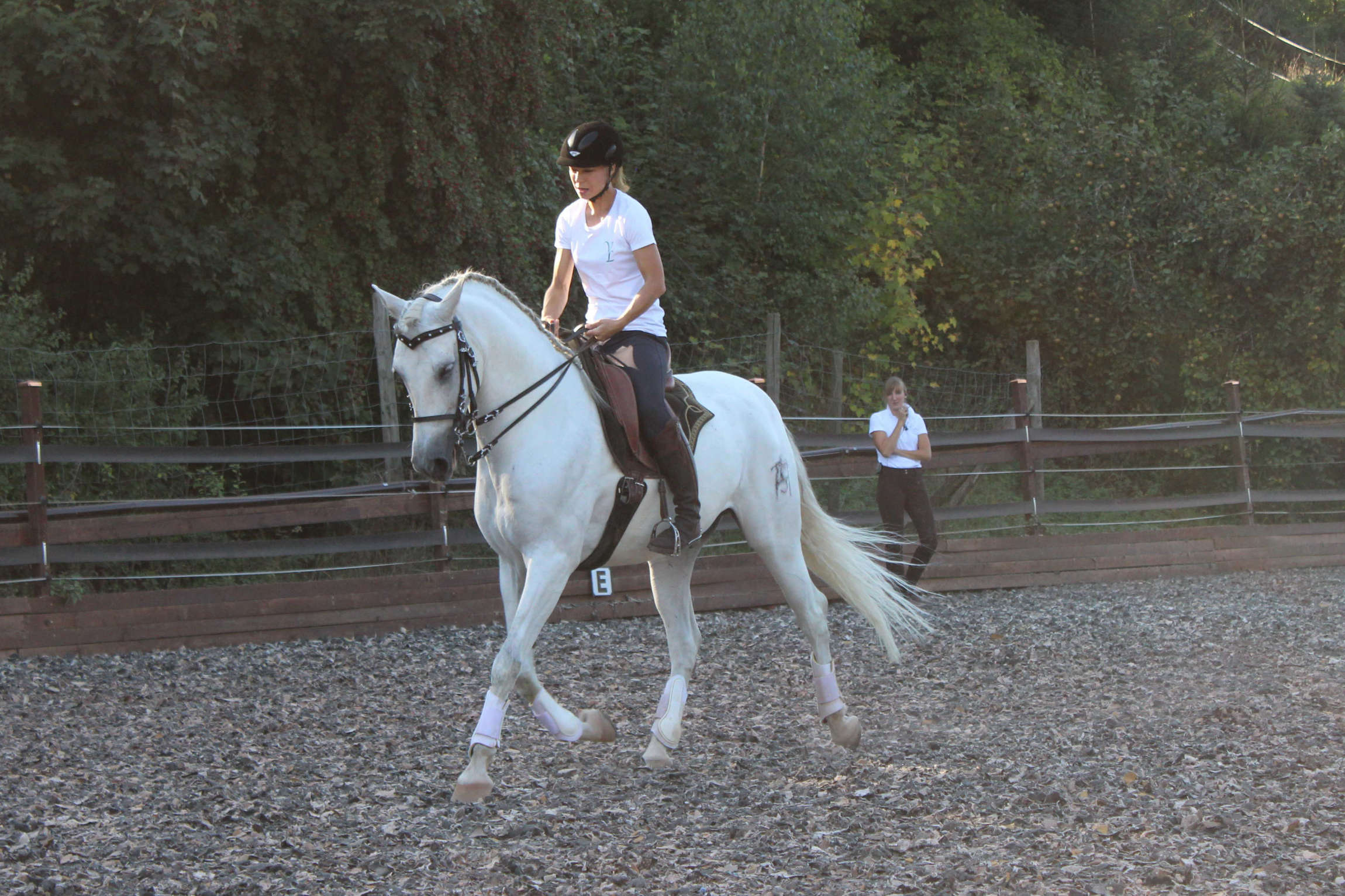 Trainer Vorstellung Vivien Linzmeier