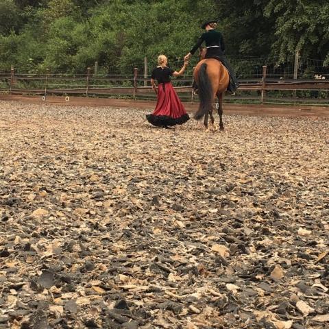Tag des Spanischen Pferdes 2019 - Spanischer Ritt - Vivien Linzmeier