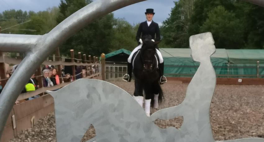 Tag des Spanischen Pferdes 2019