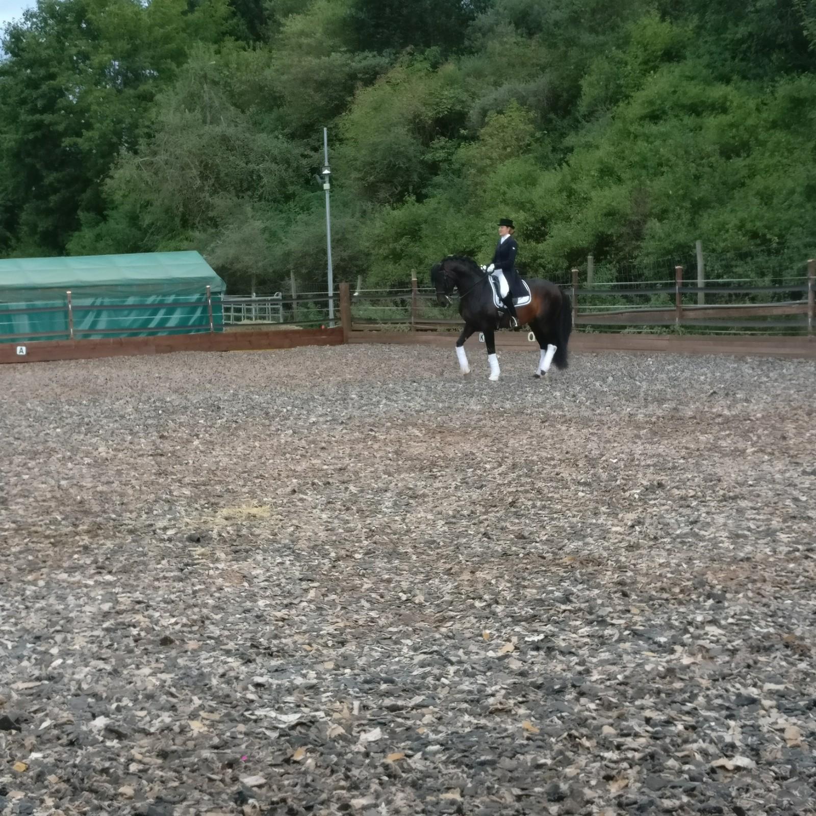 Tag des Spanischen Pferdes 2019 - Dressur-Kür - Vivien Linzmeier