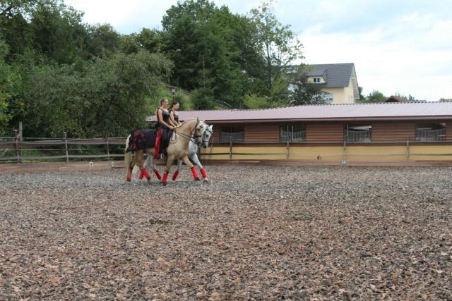 Tag des Spanischen Pferdes 2019 - Pas de Deux - Vivien Linzmeier